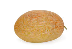 Melone Immagine Stock Libera da Diritti