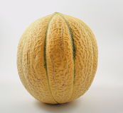 melone Lizenzfreies Stockbild