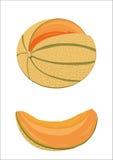 melone stock abbildung