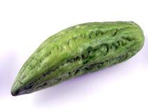 Melone amaro Fotografia Stock Libera da Diritti