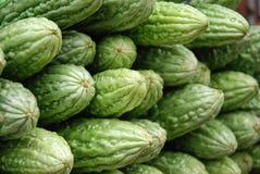 Melone amaro nel servizio Immagine Stock