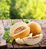 Melone con le fette ed i fogli Fotografia Stock