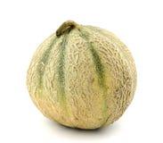 Melone del cantalupo Immagini Stock
