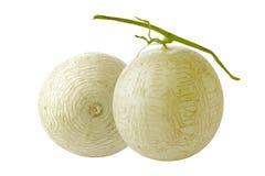 Melone del cantalupo isolato Fotografia Stock Libera da Diritti
