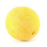 Melone di Galia fotografia stock libera da diritti