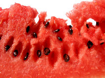 Melone di gusto Fotografia Stock Libera da Diritti