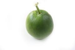 Melone di inverno su fondo bianco Immagini Stock Libere da Diritti