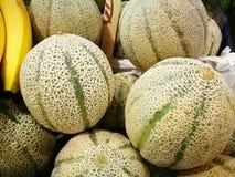 Melone do cantalupo Fotografia de Stock