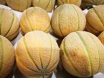 Melone do cantalupo Fotos de Stock Royalty Free