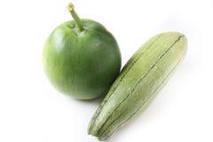 Melone e luffa di inverno su fondo bianco Fotografia Stock Libera da Diritti