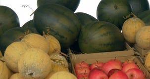 Melone ed anguria video d archivio