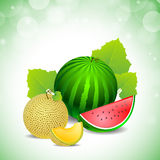 Melone ed anguria Fotografie Stock Libere da Diritti