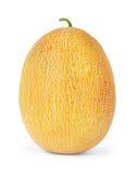 Melone, fette del melone isolate su fondo bianco Fotografia Stock