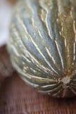 Melone fresco Immagini Stock Libere da Diritti