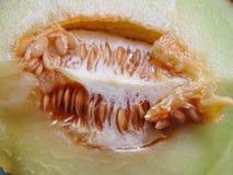 Melone fresco del cantalupo del taglio Immagini Stock