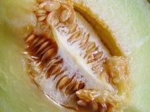 Melone fresco del cantalupo del taglio Fotografia Stock Libera da Diritti