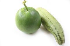 Melone fresco di inverno e della luffa su fondo bianco Fotografia Stock Libera da Diritti