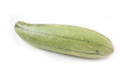 Melone fresco di inverno e della luffa su fondo bianco Immagini Stock Libere da Diritti