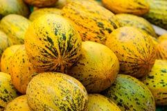 Melone fresco su un bazar del distretto Fotografia Stock Libera da Diritti