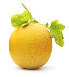 Melone getrennt Lizenzfreie Stockbilder