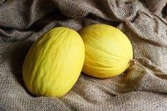 Melone giallo Immagini Stock Libere da Diritti
