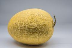 Melone giallo dorato maturo crescente di Hami di cinese fotografia stock