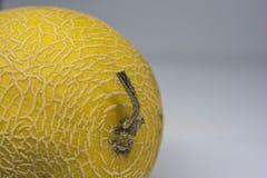Melone giallo dorato maturo crescente di Hami di cinese immagine stock