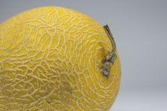 Melone giallo dorato maturo crescente di Hami di cinese fotografie stock