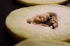 Melone giallo sui precedenti rustici scuri del metallo Fotografia Stock Libera da Diritti
