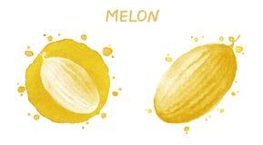 melone Illustrazione dell'acquerello Fotografia Stock