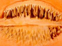 Melone interno con il fondo del seme immagine stock