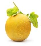 Melone isolato Immagini Stock Libere da Diritti