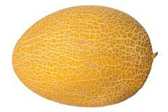 Melone maturo isolato su priorità bassa bianca fotografia stock libera da diritti