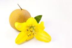 Melone mit Lilienblume Lizenzfreies Stockfoto