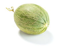 Melone reticolato Immagini Stock Libere da Diritti