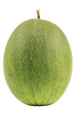 Melone su priorità bassa bianca Fotografie Stock Libere da Diritti