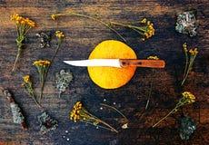 Melone und getrockneter Kamillenabschluß herauf Ansicht über dunklen Hintergrund Lizenzfreies Stockfoto