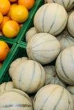 Melone und Orangen Charentais Lizenzfreies Stockbild