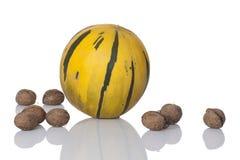 Melone und Walnüsse, getrennt auf weißem Hintergrund Stockbild