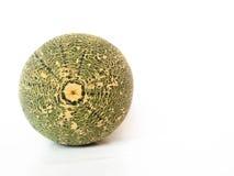 Melone verde Immagini Stock