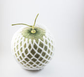 Melone verde con la rete della schiuma isolata su fondo bianco Fotografia Stock Libera da Diritti