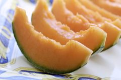 Meloneanlagen in der natürlichen Leuchte Stockfotografie