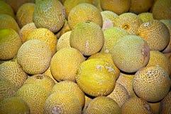 Melonen. Lizenzfreies Stockfoto