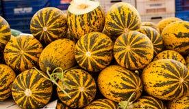 Melonenkürbisse am Markt lizenzfreies stockbild