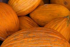 Melones Foto de archivo libre de regalías