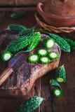 Melones amargos Fotos de archivo libres de regalías