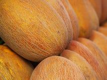 Melones amarillos grandes imágenes de archivo libres de regalías