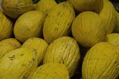 Melones amarillos grandes situados como fondo Imágenes de archivo libres de regalías