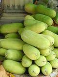 Melones de invierno Foto de archivo libre de regalías