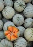 Melones en el mercado fotografía de archivo
